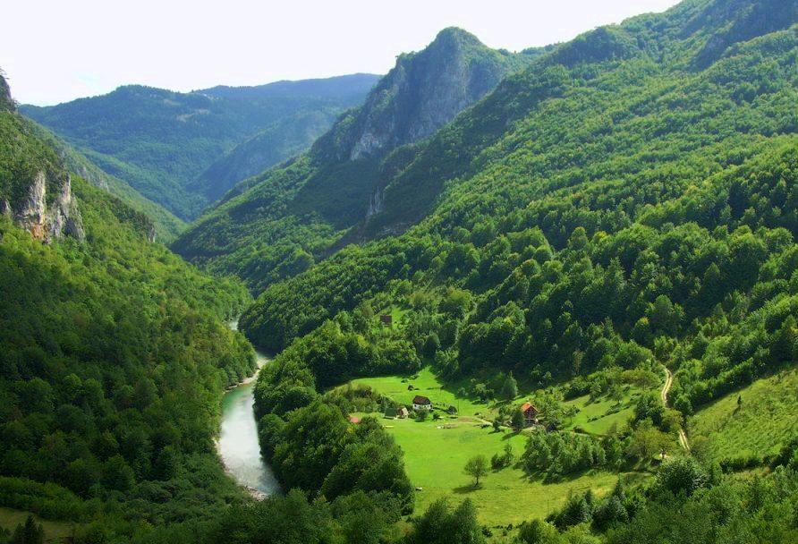 Черногория, Каньон реки Тары