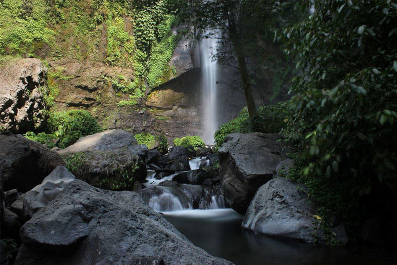 Джайлоо-туризм, джунгли