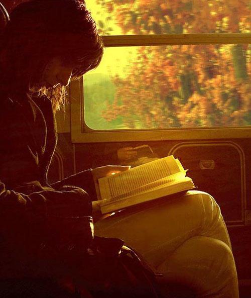 книга Девушка в поезде, Пола Хокинс
